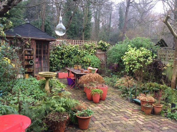 London Cottage Garden Blog