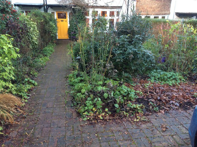 London Cottage Garden The Cottage Garden Turns From Winter To Spring London Cottage Garden Gardening Blog
