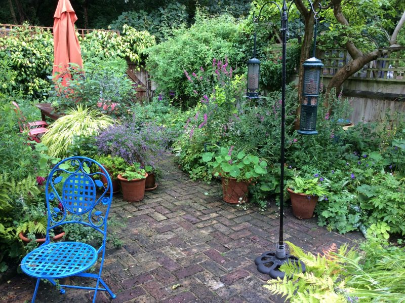 London Cottage garden style