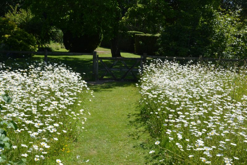 Inspiration for a cottage gardening from Belmont Gardens, Kent