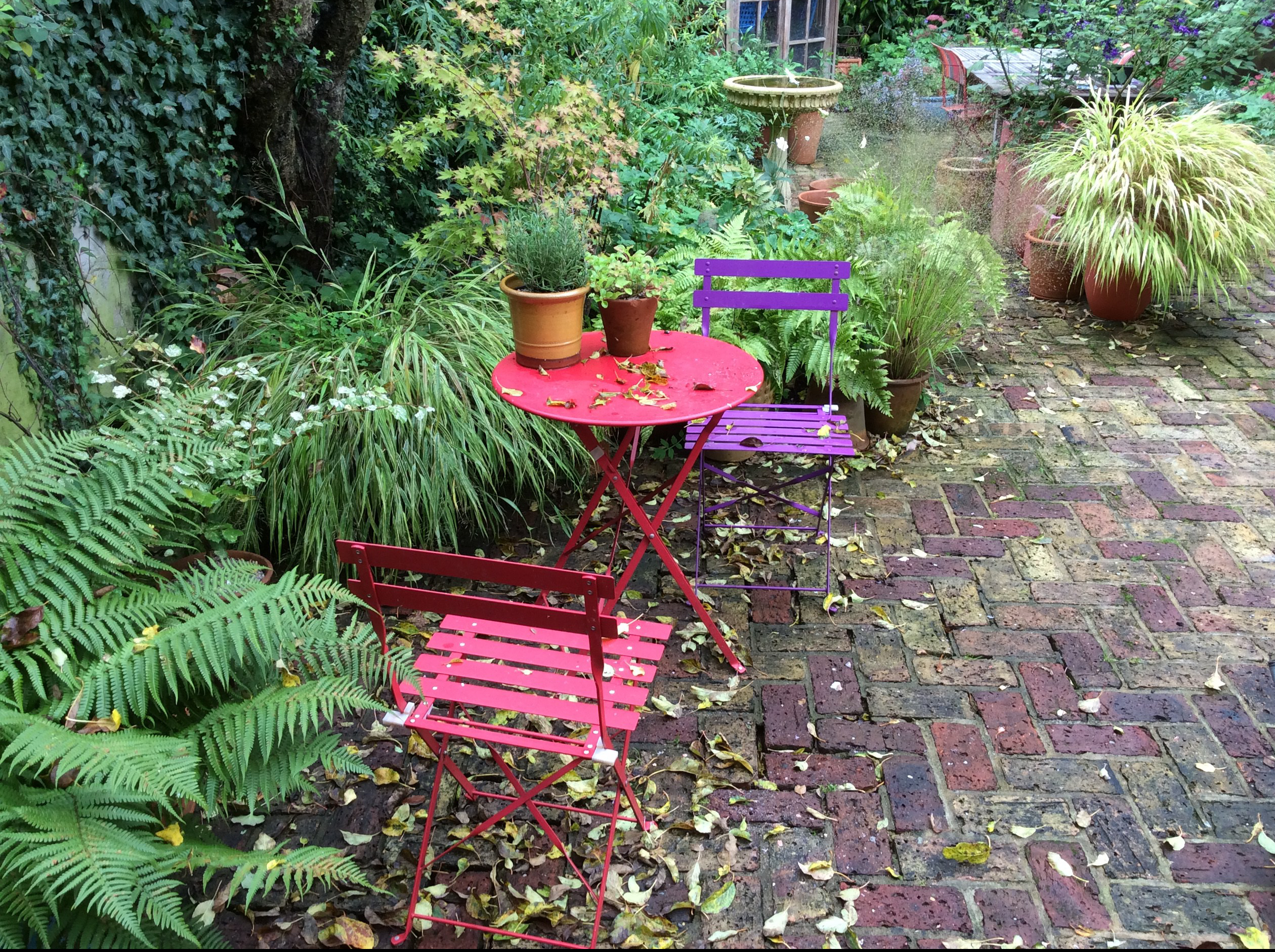 Chairs in a london cottage garden