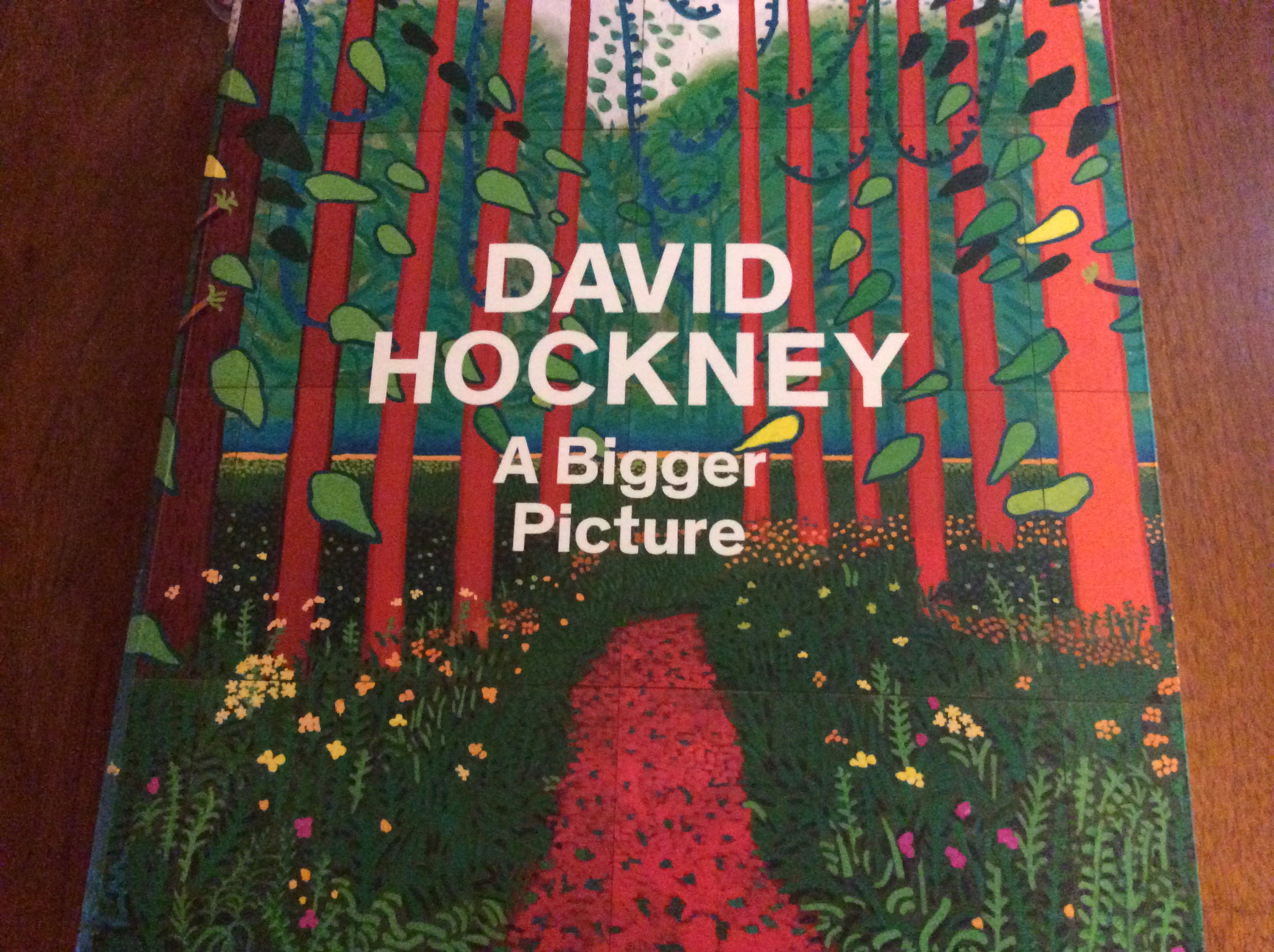 David Hockney A Bigger Picture Book