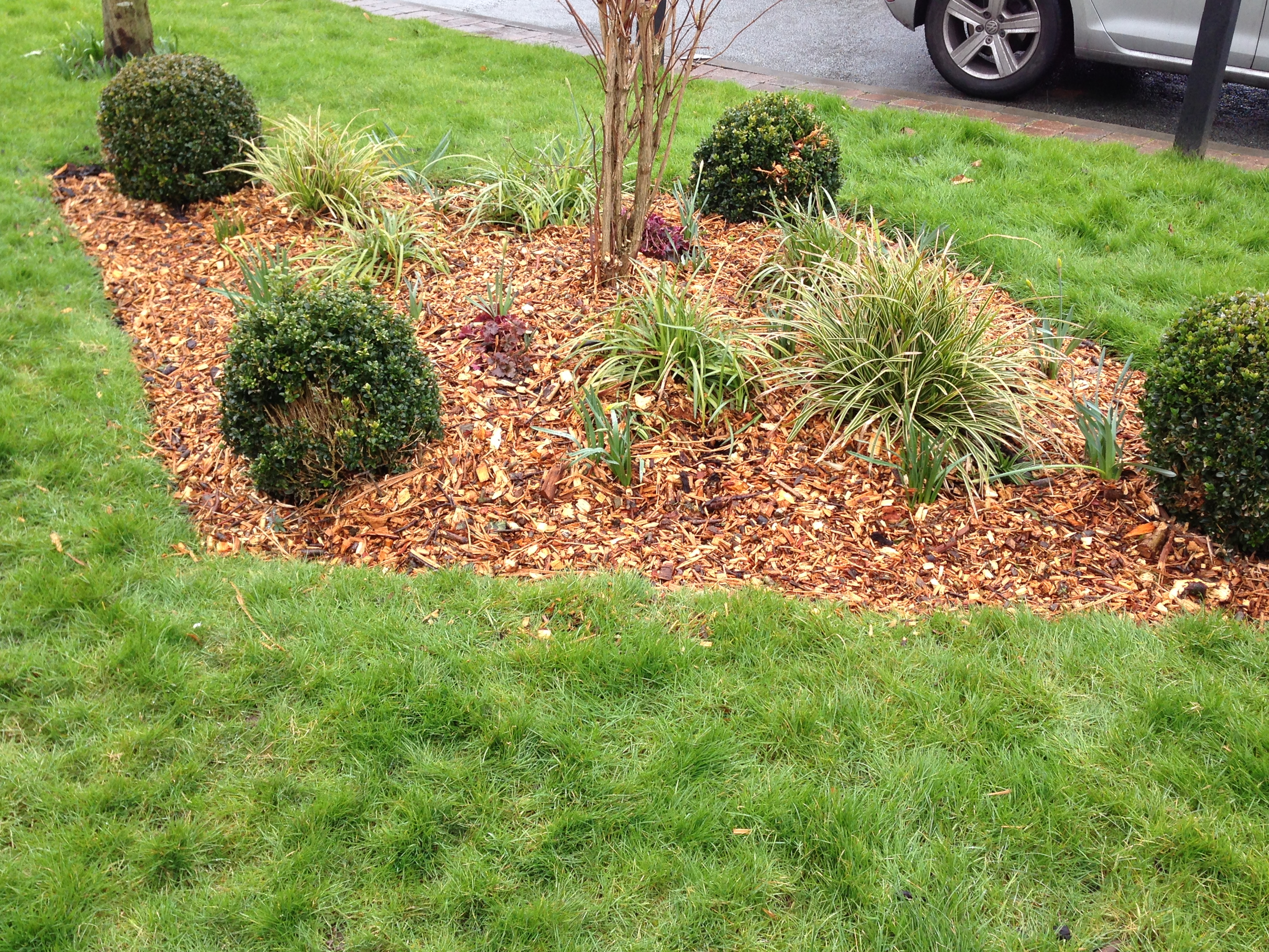 wood chipping mulch on flower bed