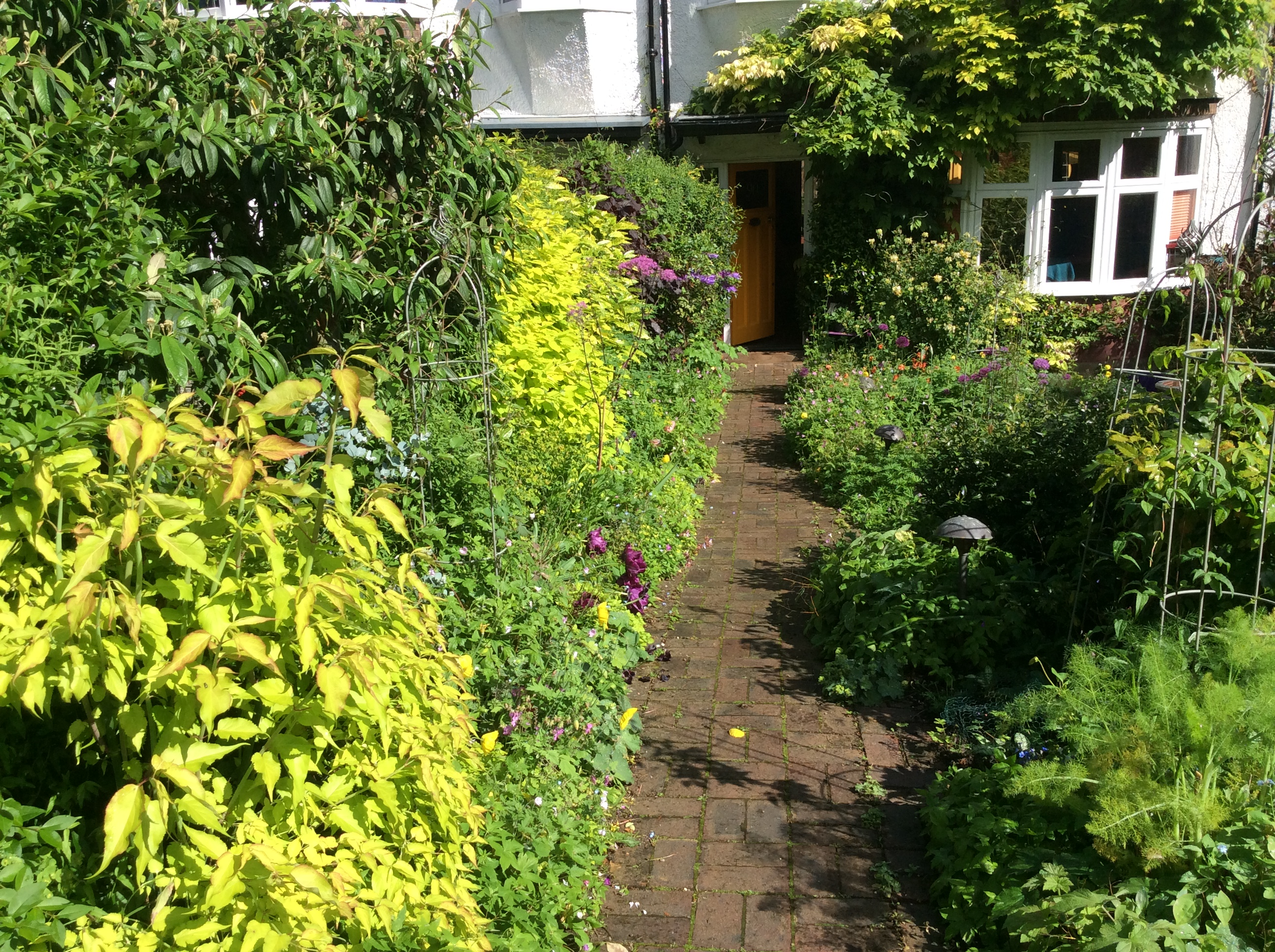 front path in a cottage garden