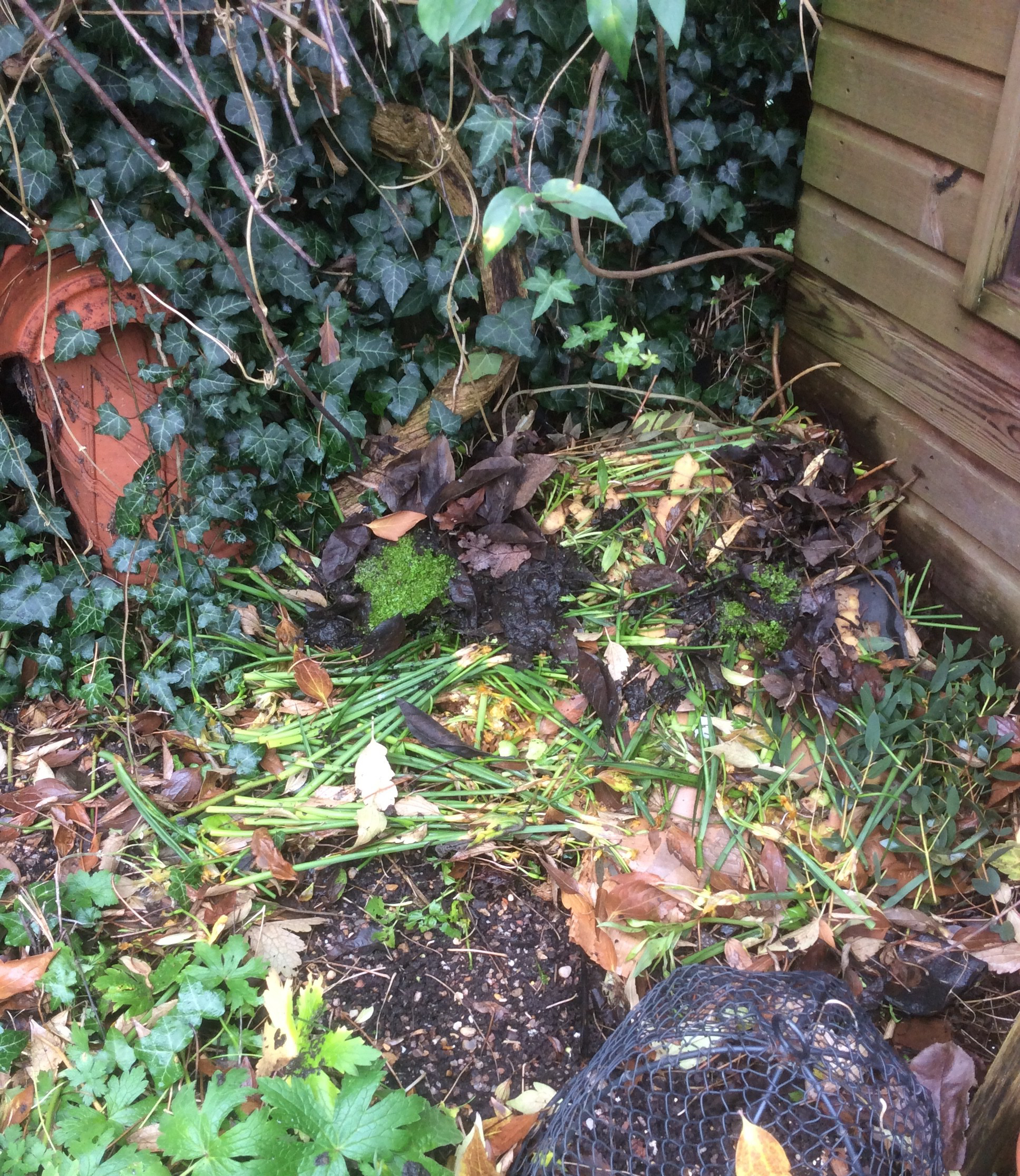 homemade composting in a cottage garden