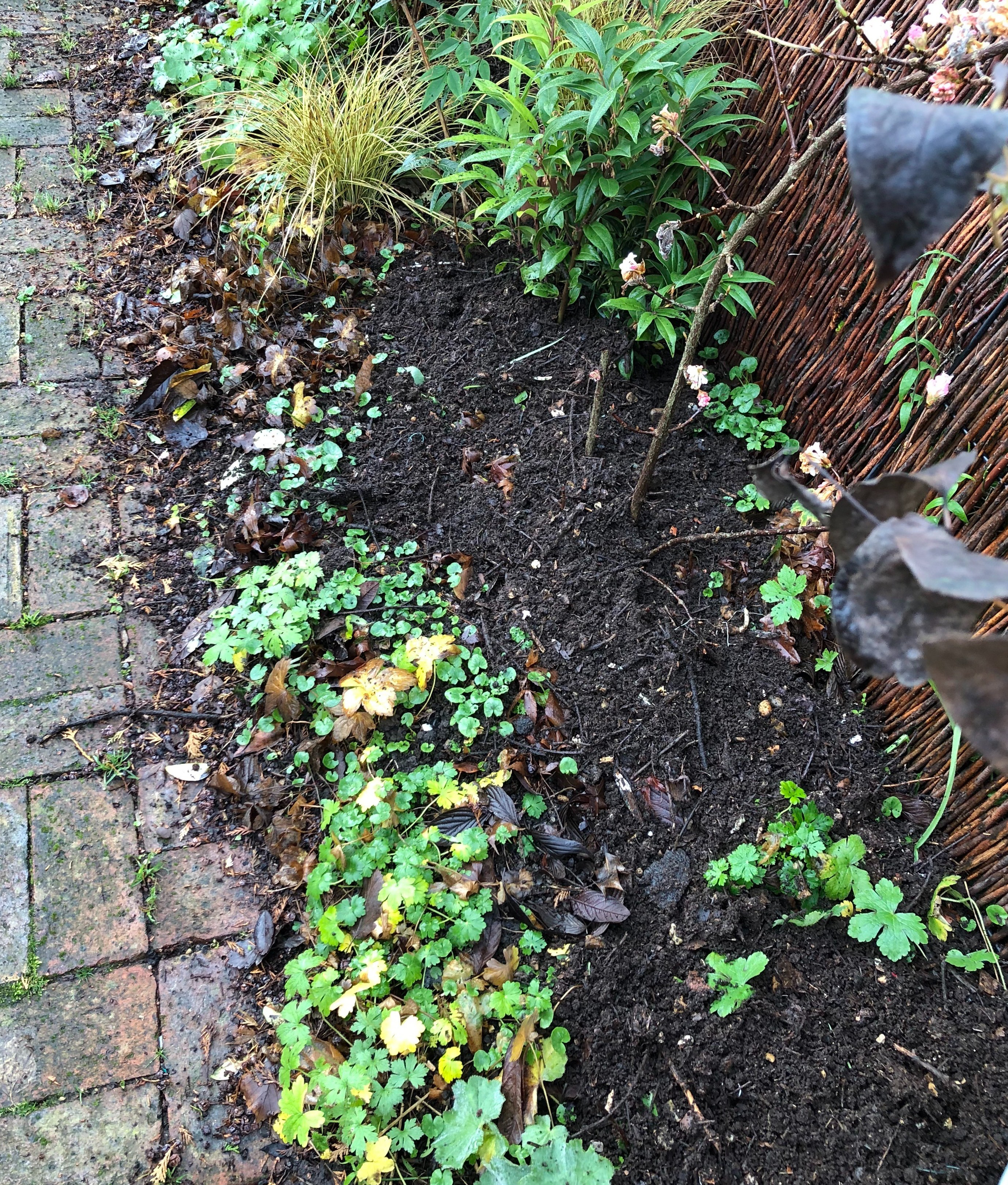 homemade compost in a cottage garden