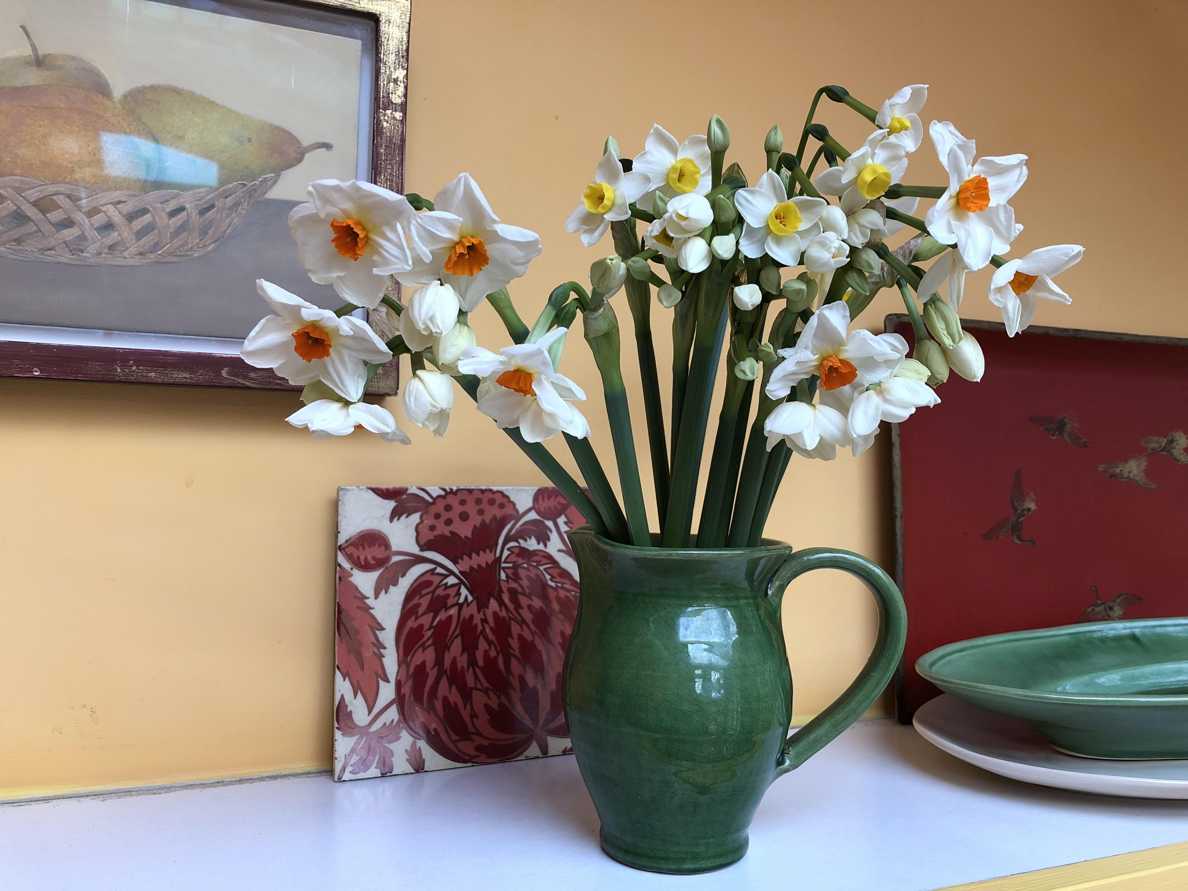 spring bulbs in a cottage garden