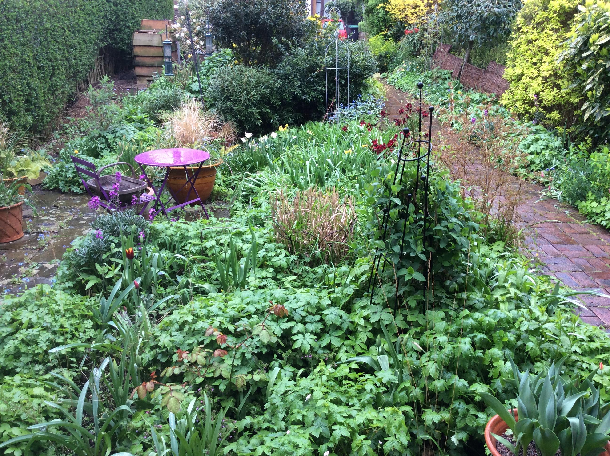 London cottage garden view
