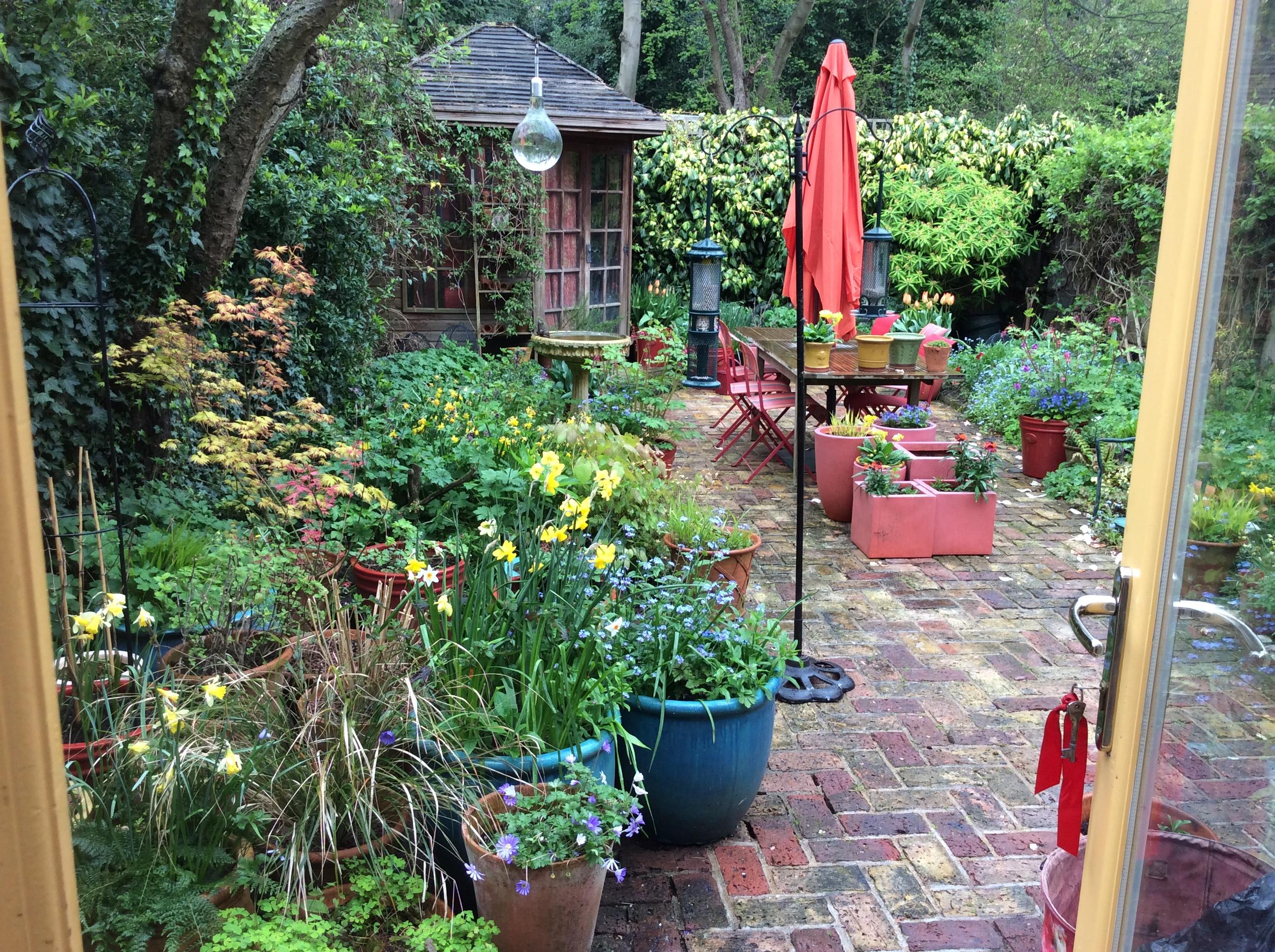 backyard London cottage garden