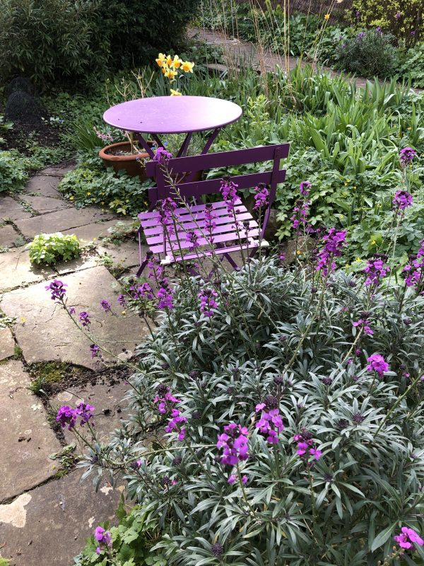 purple garden furniture in a cottage garden